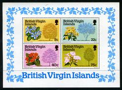1978 - BRITISH VIRGIN ISLANDS -  Catg.. Mi. BL 9 - NH - (UP554641.85.25) - British Virgin Islands