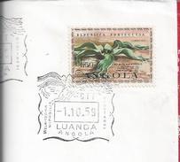 Welwitschia Mirabilis, The Time Plant Of Dinosaurs. Namib Desert. Angola. Namibia. Zeit Der Dinosaurier Pflanze. 2sc Rar - Nature