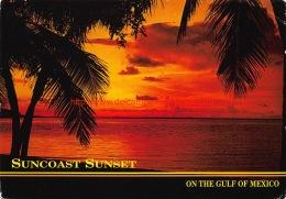 The Suncoast Of Florida - Etats-Unis