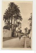 LIBYA - DERNA - BOULEVARD XXVII OCT. - ITALIAN EDITION 1920s ( 630 ) - Libya