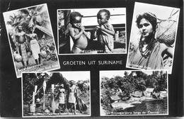 Groeten Uit Surinme - Postcards