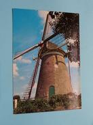 ROCKANJE Westvoorne Korenmolen ) ( Hollandse MOLEN / MOULIN ) Anno 19?? ( Details : Zie Foto´s ) !! - Nederland
