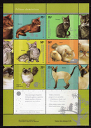 Argentina 2005 Domestic Felines.cats.chats,S/S.MNH - Argentina