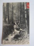 88 Vosges Plombières Les Bains Petite Cascade Dans Le Parc - Plombieres Les Bains