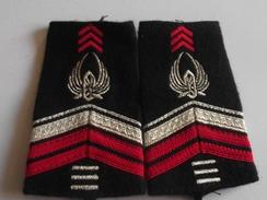 Fourreaux Du Train Grade Brigadier-chef 3 Brisques Armée De Terre - Uniforms
