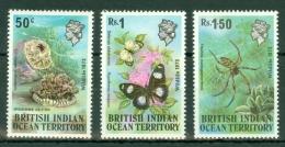 British Indian Territory (BIOT): 1973   Wildlife (Series 1)   MH - British Indian Ocean Territory (BIOT)