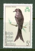 British Indian Territory (BIOT): 1975   Birds   SG62    5c   MH - British Indian Ocean Territory (BIOT)