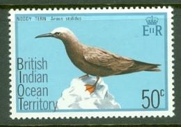 British Indian Territory (BIOT): 1975   Birds   SG68    50c   MH - British Indian Ocean Territory (BIOT)