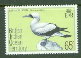 British Indian Territory (BIOT): 1975   Birds   SG70    65c   MH - British Indian Ocean Territory (BIOT)