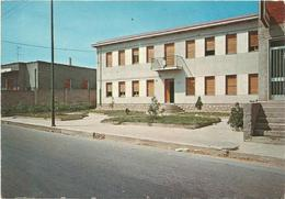 T2721 Riola Sardo (Oristano) - Casa Comunale / Non Viaggiata - Italia