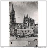 BRGTP3961CPA-LFTD4218TABU.Tarjeta Postal De BURGOS.,Edificios,animales,,catedral.SACRAMENTAL  DE BURGOS.Circulada - Burros