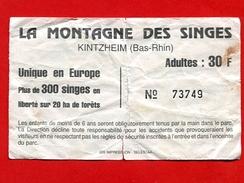 993-1 -  Ticket D'entrée  La Montagne Des Singes (Alsace) - Eintrittskarten