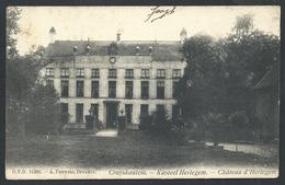 +++ CPA - KRUISHOUTEM - CRUYSHAUTEM - Kasteel HERLEGEM Château - D.V.D. 11386 DVD // - Kruishoutem