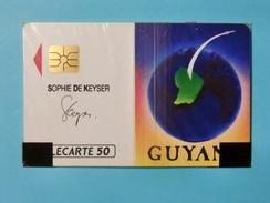 COLLECTION DE TELECARTES FRANCE MONACO DOM TOM EUROPE ET MONDE ET  THEMES /ALLEZ VOIR MES AUTRES VENTES CETTE SEMAINE - Phonecards