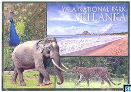Sri Lanka Postcards, Yala National Park, Leopard, Animal, Postcard - Sri Lanka (Ceylon)