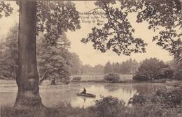 Zichem - Okselaar - Vijver In Het Park - Scherpenheuvel-Zichem