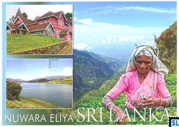 Sri Lanka Postcards, Nuwara Eliya, Postcard - Sri Lanka (Ceylon)