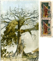CAMEROUN  DOUALA  Diedo  Le Baobab  Nice Stamps - Camerun