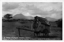63 - La Roche-Blanche - Plateau De Gergovie - Cabane De Berger Dans Les Ruines De L'Oppidum - France