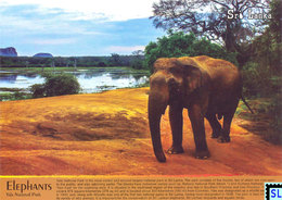 Sri Lanka Postcards, Tissamaharama, Postcard - Sri Lanka (Ceylon)