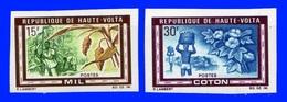 Haute Volta  YT  N° 204-205  Imperf (non Dentelé) Neuf ** Gomme Parfaite Sans Charnière - Upper Volta (1958-1984)