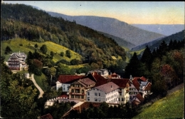 Cp Bad Rippoldsau Schapbach Im Schwarzwald, Stadtpanorama, Wald - Germania