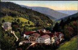 Cp Bad Rippoldsau Schapbach Im Schwarzwald, Stadtpanorama, Wald - Other