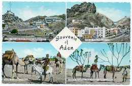 ADEN/YEMEN - VIEWS (SIGNAL HILL AND R.A.F. HOSPITAL BARRACK HILL-CAMELS RETURNING FROM MARKET SHEIKH OTHMAN) - Yemen