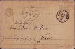 HUNGARY - MAGYARORS. - POSTCARD - MALACZKA POZSO. - To WIEN - 1903