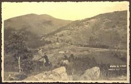SERBIA - SRBIJA - VRSAC - VRŠAC - LOVCI - 1942 - Jugoslawien