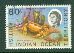 British Indian Territory (BIOT): 1968/70   QE II - Marine Life   SG23a    60c   Used - British Indian Ocean Territory (BIOT)
