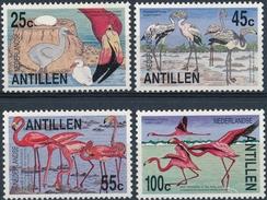 Ned,Antillen  Vogels