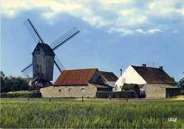 SINT-MARTENS-LATEM (O.Vl.) - Molen/moulin - Houten Standaardmolen (Koutermolen) Voor De Verplaatsing En Restauratie - Sint-Martens-Latem