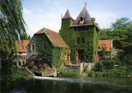 HALEN (Limburg) - Molen/moulin - Prachtige Prentkaart Van De Rotemse Molen Op De Velp (uitgave: Provincie Limburg) - Halen