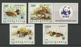YUGOSLAVIA  1989  WWF  BIRDS DUCKS  MNH