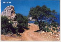 CYPRUS - AKAMAS, Nice Stamp , Used , Large Format - Cyprus