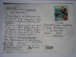 SAINT LUCIA SCUBA DIVING PLONGÉE SOUS-MARINE CP SAINT LUCIA DIAMOND FALLS SAINTE LUCIE CHUTES FLEURS NATURE