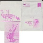 Égypte 1964. Aérogramme, Nefertiti Avec Pschent. Chasse Aux Canards Migrateurs. Représentations Antiques, Hiéroglyphes