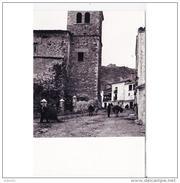 CNCTP6111CPA-LFTD10534TABU .Tarjeta Postal DE CUENCA.Animales,edificios,plantas.montes Y CALLE Y PALACETE En CANETE - Burros