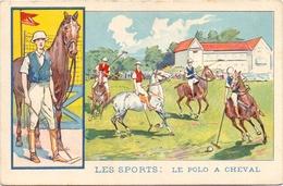 Sport - Polo à Cheval - Pub Reclame - ,Solution Pautauberge - Bruxelles - Cartes Postales