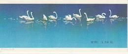 CHINE 1983 - Cygnes, Swans - Carnet Complet, Très Belle Cote