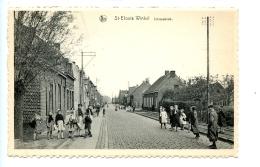 Sint-Eloois-Winkel - Smisseknok / Uitg. J. Oost-Vanhevel - Ledegem