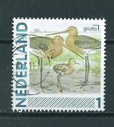 2011 Netherlands Birds,oiseaux,vögel,vogels,grutto Used/gebruikt/oblitere - Oblitérés