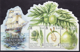 Pitcairn Pitcairn Islands 2015 Block 69 The Breadfruit Saga,plants