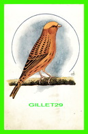 "OISEAUX - THE LIZARD CANARY -  PUB. BY ""CAGE BIRDS"" - SERIES No 6 - - Oiseaux"