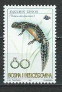 Bosnien-Herzegowina Mi 104 ** MNH Triturus Alpestris