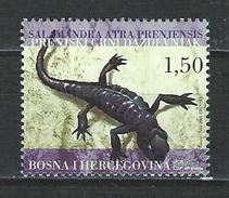Bosnien-Herzegowina Kroat. Post Mi 128 ** MNH Salamandra Atra