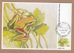 Australia Maximum Cards FDI 1982 Blue Mouintains Tree Frog