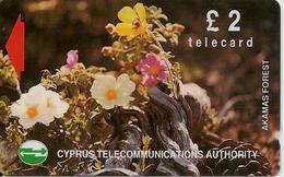 CARTE-MAGNETIQUE-CHYPRE-2£-FLEURS AKAMAS FOREST-TBE - Chypre
