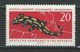 DDR Mi 979 ** MNH Salamandra Salamandra
